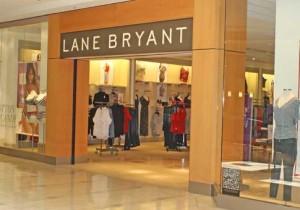 lane bryant job applications